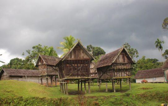Desa Lopus - Dayak Tomun